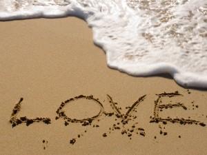 for OMR022614 on Love